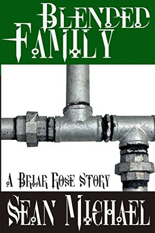 Book Cover: Blended Family