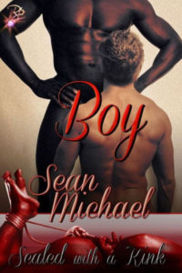 Book Cover: Boy