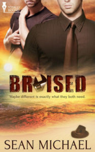 Book Cover: Bruised