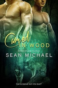 Book Cover: Carved in Wood