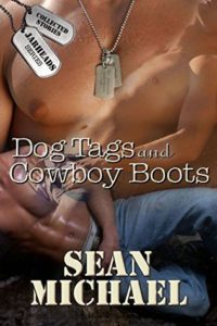 Book Cover: Dog Tags and Cowboy Boots