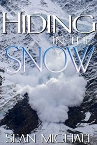 Book Cover: Hiding in the Snow