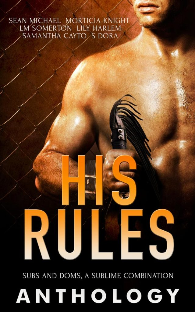 Book Cover: His Rules Anthology