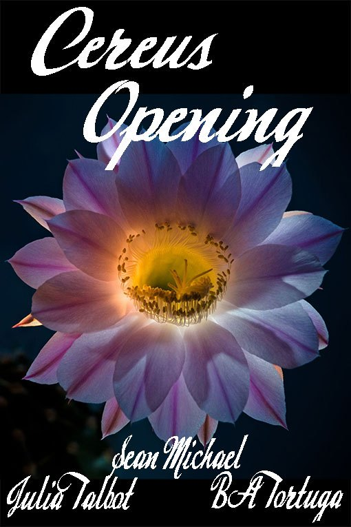 Book Cover: Cereus: Opening