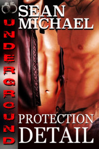Book Cover: Protection Detail